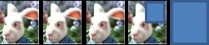 3,75 lapins