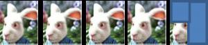 4,25 lapins